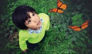 butterfly_garden-2